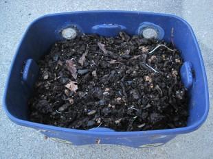 Compost Dirt